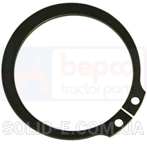 RING, LOCKING Ford 123/11067776 (11067776)